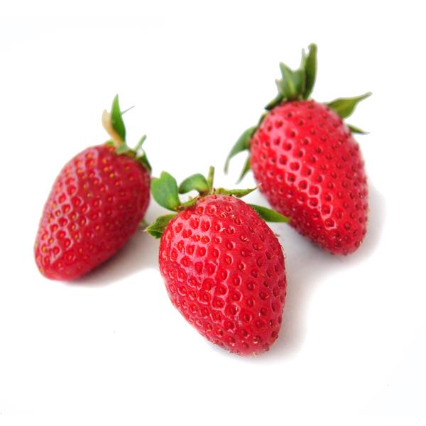 תות ענבים