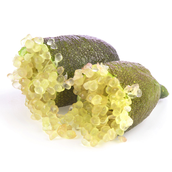 פינגר ליים צהוב